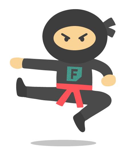 ninja do Ferretto