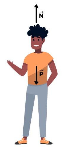 Força normal e peso em uma pessoa parada.