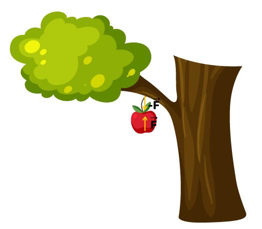 Desenho de uma árvore com uma maçã mostrando as interações mútuas entre elas.