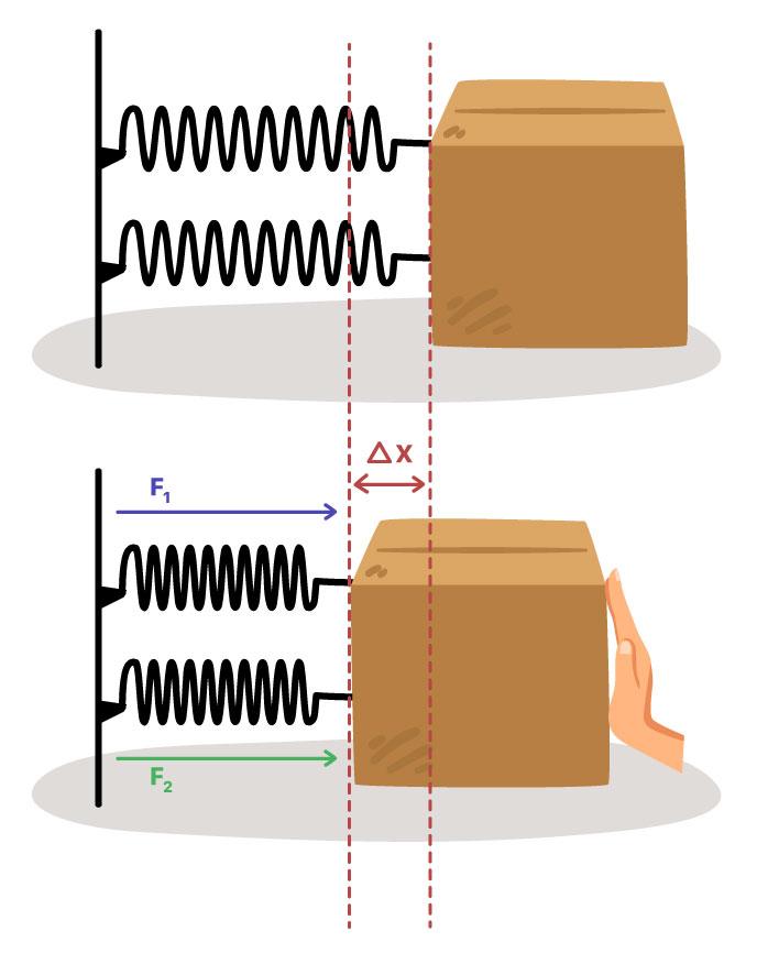 Exemplo de associação de duas molas paralelas