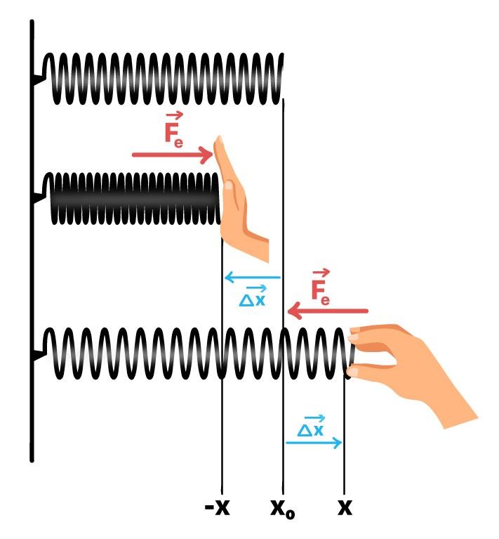 Força elástica é uma força restauradora, age em sentido oposto à deformação
